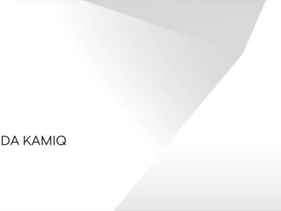 Skoda Kamiq - Footage